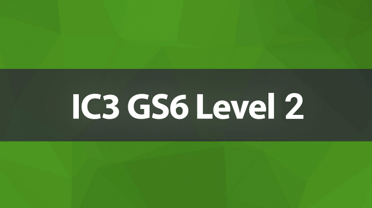 IC3 GS6 - Level 2